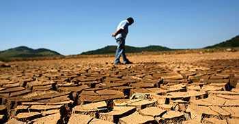 Эффективность земельных ресурсов: чем определяется и как повысить