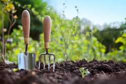 Mineral fertilizers and their role in agricultural production